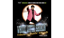 Whole lotta Shakin' - Tribute to Shakin' Stevens